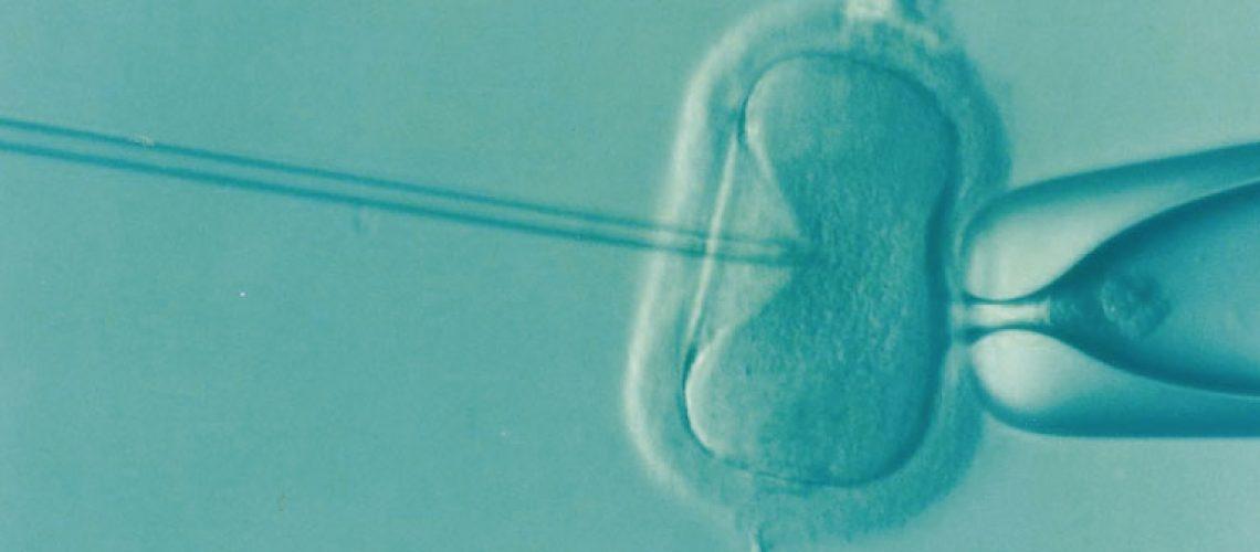 Clínicas de reproducción asistida en México